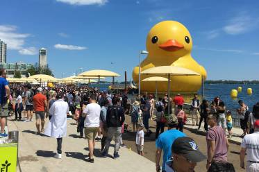 20170704-rubberduck.jpg-resize_then_crop-_frame_bg_color_FFF-h_1365-gravity_center-q_70-preserve_ratio_true-w_2048_